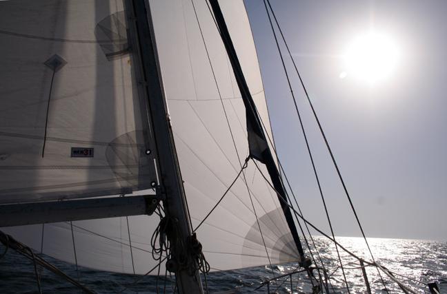 foto-regatta-florin-1-102.jpg